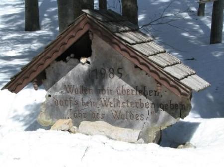 Gedenkstein zum Jahr des Waldes am oberen Rand der Wiese