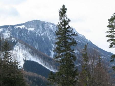 Blick zu den Nordwest-Abstürzen des Kuhschneebergs