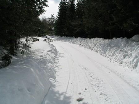 Die geräumte Zufahrtsstraße zum Gasthaus
