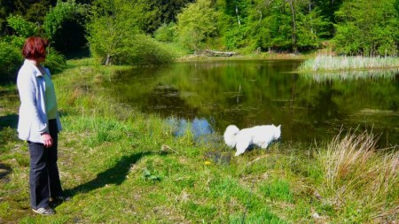 Am Rührsdorfer See