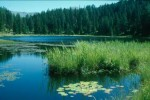 bb-schwarzsee-bei-nauders-web