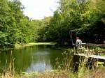 bb-waldteich-zlebsky-rybnik-web