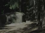 bb-waldbunker-web-p3702