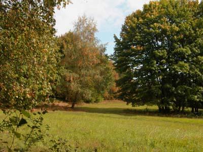 bb-waldwiesen-stamberk-vrch-web-p3627