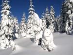 bb-e-santa-klaus-und-eisbar-web-p1502