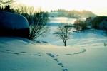 bb-frosttag-bei-kronegg-altmelon-web