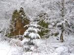 Die Ruine des Lurgerhofes