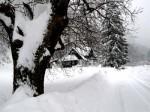 Landhaus im Schindeltal