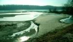 bb-niedrigwasser-an-der-donau-web-scan511