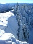 Wechten und Eisbäume am Weißenstein