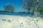 bb-winterzauber-hohes-waldviertel-web