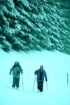Schneegestöber im Dürnbergtal