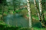 bba-zwettlbach-roblmuhle-web-scan567
