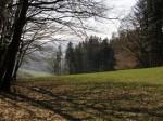 bbr-osterhasenlichtung-beim-windkreuz-web-p2624