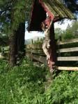ab-rotes-kreuz-am-kulturweg-web-dscn0025
