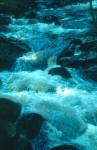 bb-bei-hochwasser-ende-april-2005-web