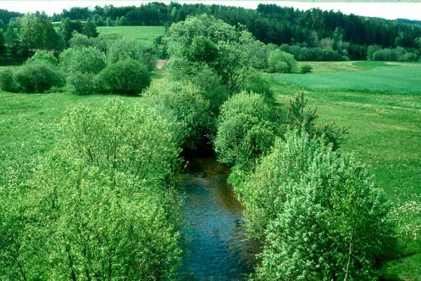 bb-kamp-hochtal-bei-hausbachbrucke-web