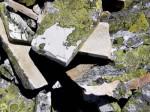 xbb-schieferplatten-mit-landkartenflechte-web-p4776