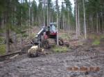 """""""Moderne Waldbearbeitung"""""""