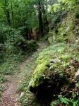 bb-wanderweg-zur-holzwiese-web-p5920
