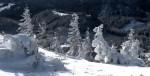 ab-schneegestalten-vom-stadelberg-web