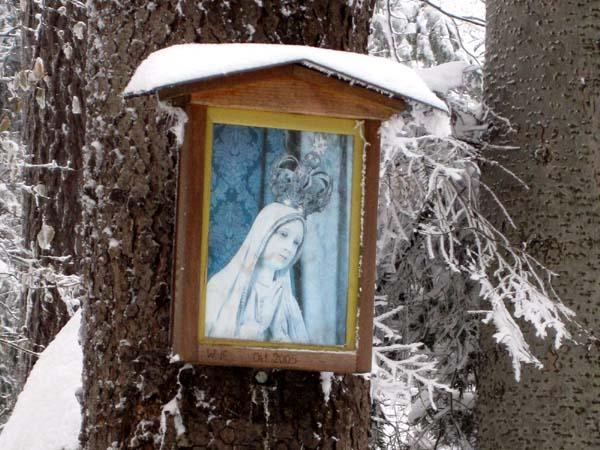 bb-maria-im-winterwald-web-img_0656