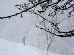 bb-nebel-am-nordhang-web-img_0601