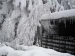 bb-eskimohaus-am-edlesberger-teich-web-img_1191