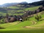bb-wiesenwienerwald-moosergraben-web-img_1697
