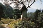 bb-alte-wegkapelle-am-niederalpl-web
