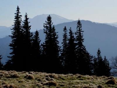 Jochart und Schneeberg