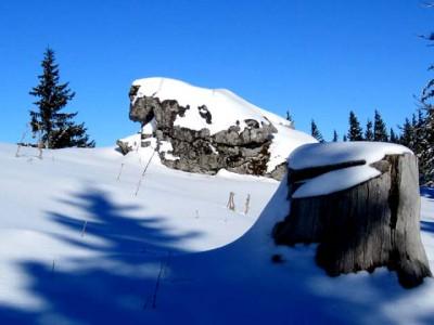 """Ein Felsblock als """"Schneeleopard"""""""