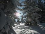 BB Sonnenblick nach der Waldquerung WEB DSCN2960