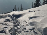 BB Spuren im windverblasenen Schnee WEB RSCN2941