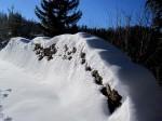 BB Holzstoß als Schneehöhenmesser WEB IMG