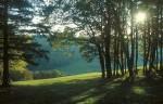Herbsttag am Meiselberg