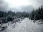 Evelines Winterbilder Altmelon WEB DSCN6628