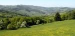 Rund um Michelbach - am gesamten Horizont, eine der herrlichsten Frühlingswanderungen!