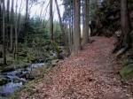 Wanderweg vor dem Ausstieg nach Oberndorf
