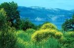 Ausblick zur Insel Cres