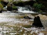 AB Kamp Wildwasser WEB DSCN3597