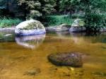 BB Kamp goldenes Wasser WEB IMG_5183