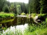 BB Kamp wie ein Teich WEB IMG_5213