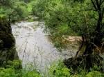 BB Vom Roitener Wiesenbach zum Wildwasserlauf WEB IMG_5175