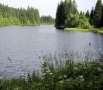 Teich Pohorsky rybnik bei Buchers