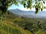 AB Ausblick gegen Dorf Tirol