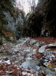 Wildbachbett oberhalb der Klamm