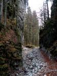 Dammweg im Canon unterhalb der Klamm