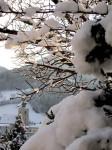 BB verschneiter Garten WEB IMG_6427