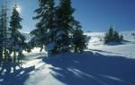 BB Gipfelhang oberhalb der Marienseer Schwaig WEB Scan 1514